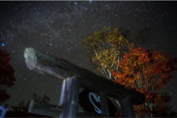 白蛇縁結びの銀河紅葉氷