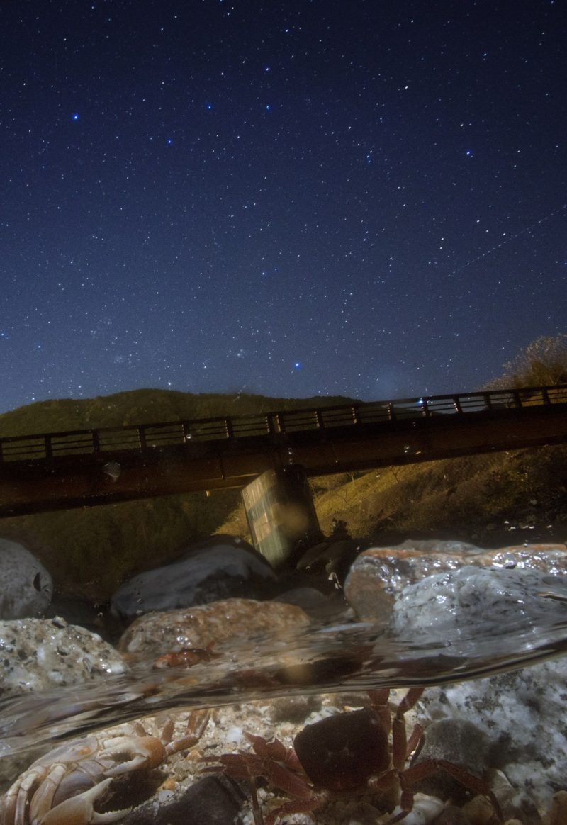 【10月】クラムボンの星空(半水面星景写真 サワガニ)